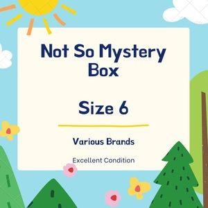 Not So Mystery Box Size 6 EUC